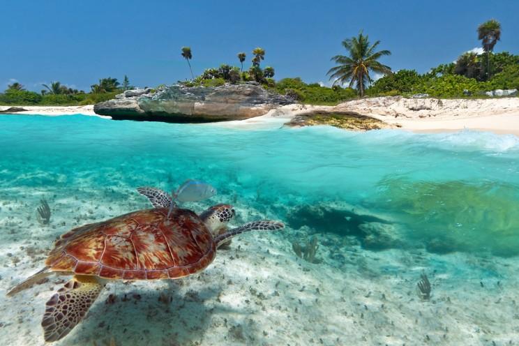 giramondo-yucatan