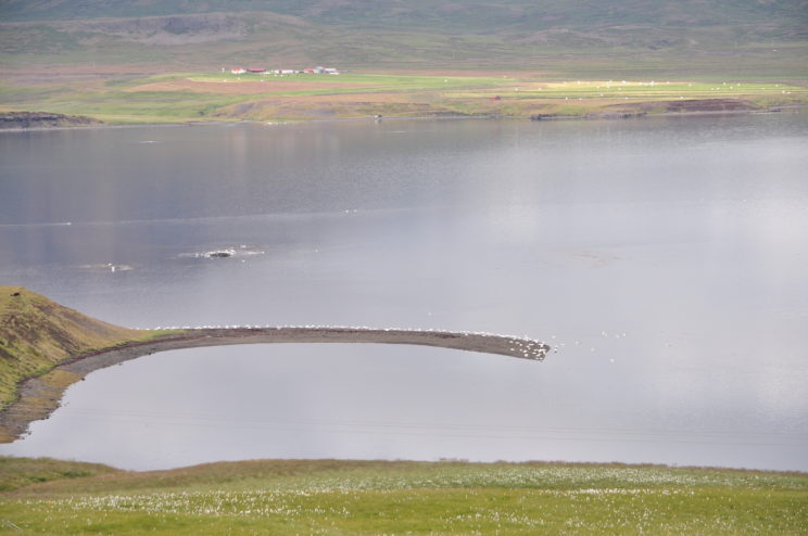 islanda-2015-262
